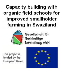 websitebanner-swaziland-project